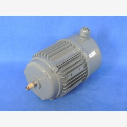 AC Motor, 0.16 KW, 230 V, 1-phase (New)